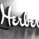 Herbergers Offering Good Discounts