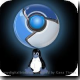 Google Chrome for Linux and Extension