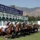 2010 Breeders' Cup Results Get Exciting