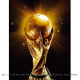 Fifa World Cup Voting Process Criticized
