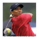 Tiger Woods no more Endorsed by Gillette